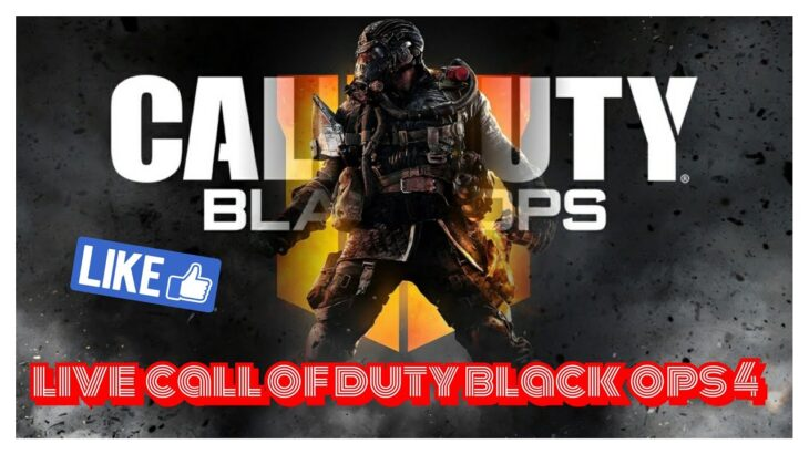 Call of duty black ops 4 fun